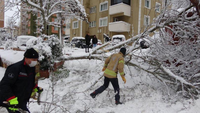 Son dakika: Kar yağışının bilançosu açıklandı - Haberler