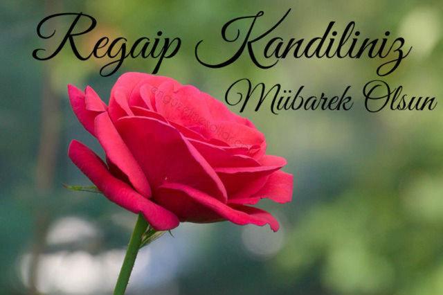 En güzel Regaip Kandili mesajları 2021 - Resimli, uzun, kısa, ayetli, hadisli, dualı Kandil mesajı ve sözleri