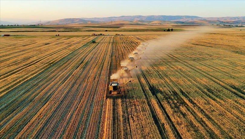 Tarım ve Orman Bakanlığının kırsal kalkınma destekleri yeni kararlarla artıyor
