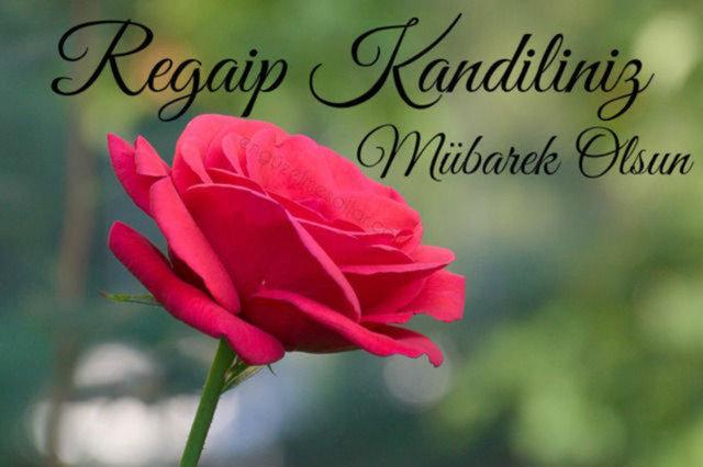 Regaip Kandili mesajları 2021 - Resimli Kandil mesajları ve sözleri - Dualı, hadisli, ayetli Regaip mesajı