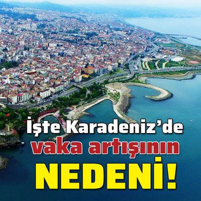 İşte Karadeniz'deki artışın nedeni!