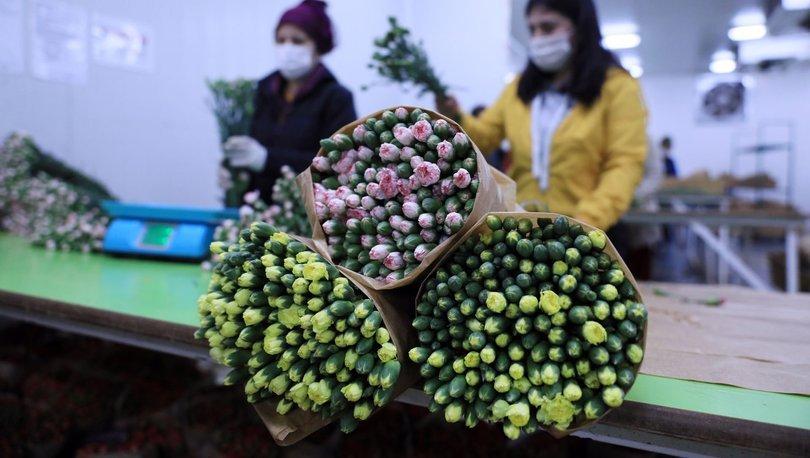 Çiçek ihracatı yüzde 19 yükseldi