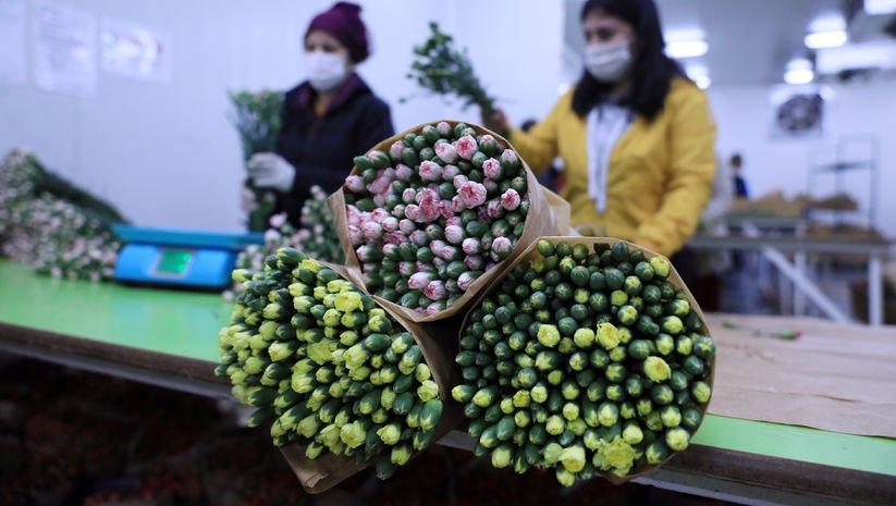 Çiçek ihracatında artış