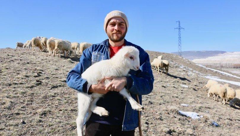 Sevdiği işi yapmak için avukatlık yerine çobanlığı tercih etti