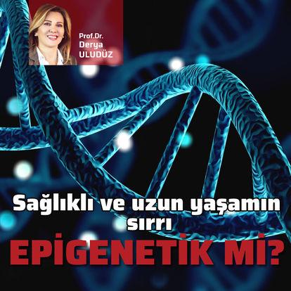 Sağlıklı ve uzun yaşamın sırrı epigenetik mi?