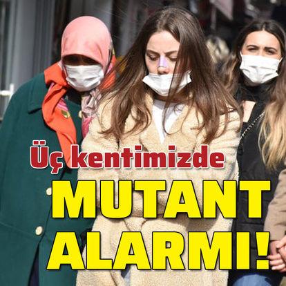 Trakya'da mutant alarmı!
