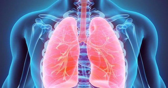 BU BESİNLER ÖNEMLİ! Akciğeri güçlendiriyorlar! - Haberler