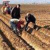 Çiftçiye mazot gübre desteği ödemeleri yattı mı?