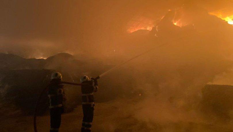 Son dakika: Kırklareli'nde hayvan çiftliğinde yangın! Hayvanlar taşınıyor