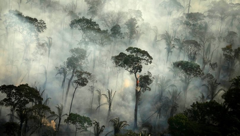 Brezilya'da BBC'nin 'Amazon ormanları Facebook'ta satılıyor' haberi sonrası soruşturma başlatıldı