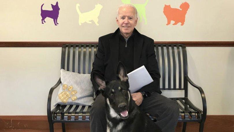 SON DAKİKA: ABD Başkan Joe Biden ve First Lady Jill Biden'ın köpekleri Beyaz Saray'ı karıştırdı - Haberler