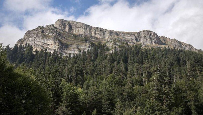 Ayı Kayası Tabiat Parkı, yürüyüş tutkunlarının adresi oldu