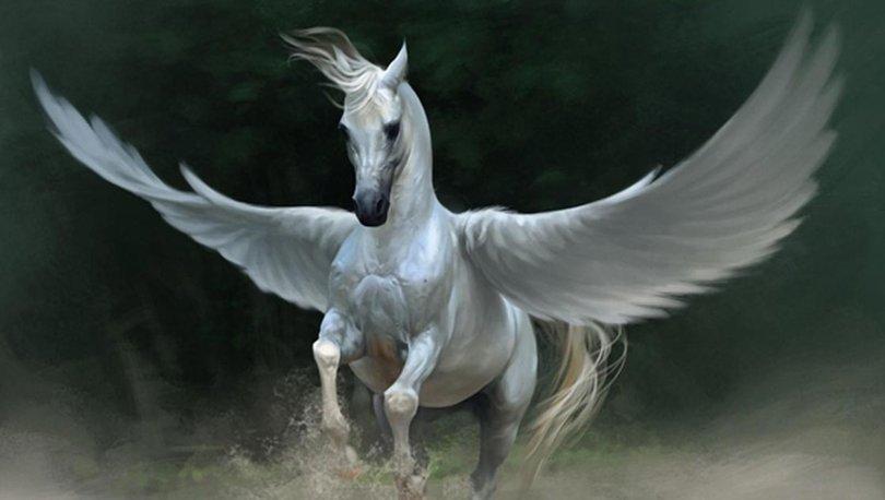 Unicorn nedir, ne demek? Unicorn anlama geliyor?
