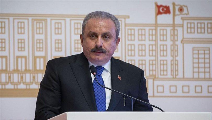 TBMM Başkanı Şentop, Tekirdağ'da bazı okullarda Atatürk büstlerine yapılan saldırıları kınadı