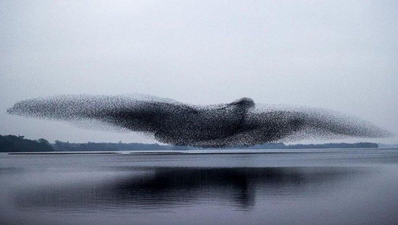 Fotoğraf sanatçısı gökyüzündeki toplu şöleni fotoğrafladı
