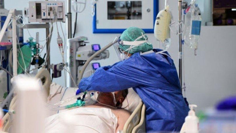 Deli dana hastalığı nedir, belirtileri nelerdir? Deli dana hastalığı öldürür mü?