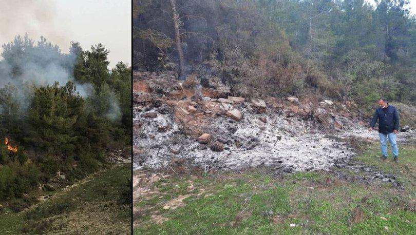 Yangını fırsat bilip, ağaçları kestiler!