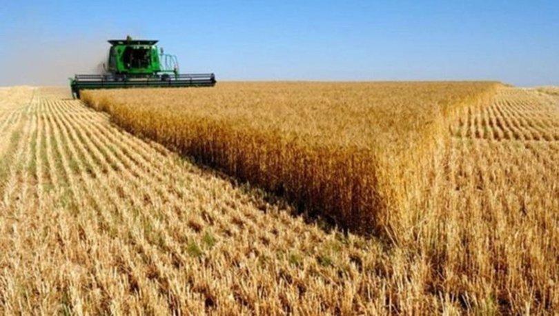 2021 tarımsal desteklemeler sorgula! 2021 tarımsal desteklemeler, mazot gübre, süt desteği ödemeleri yattı mı?