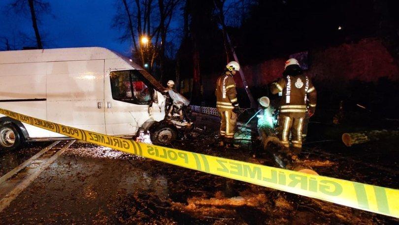 Son dakika: Dolmabahçe'de kontrolden çıkan minibüs kaza yaptı! Sürücü yaralı, ağaç devrildi