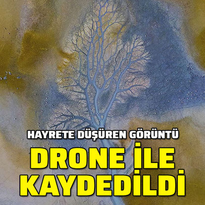 Hayrete düşüren görüntü! Drone ile görüntülendi