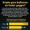 Kripto para kullanımı ne kadar yaygın?