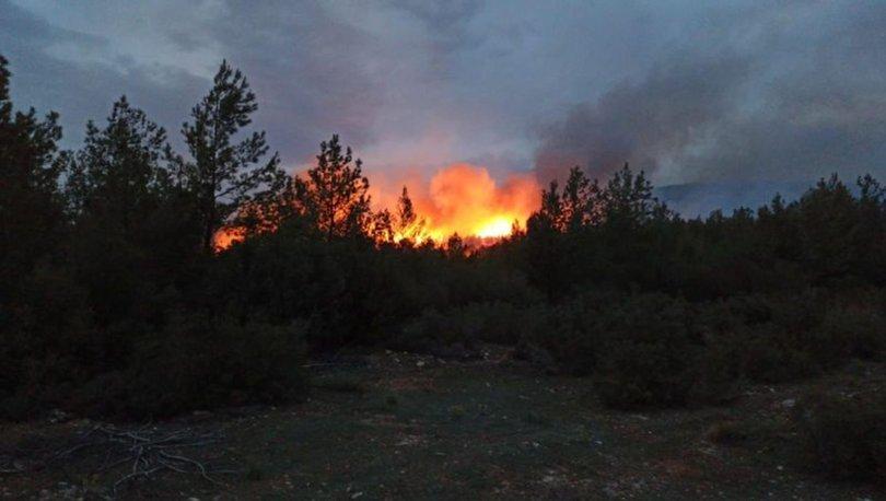 Son Dakika: Muğla'da korkutan yangın! Sebebi... - Haberler