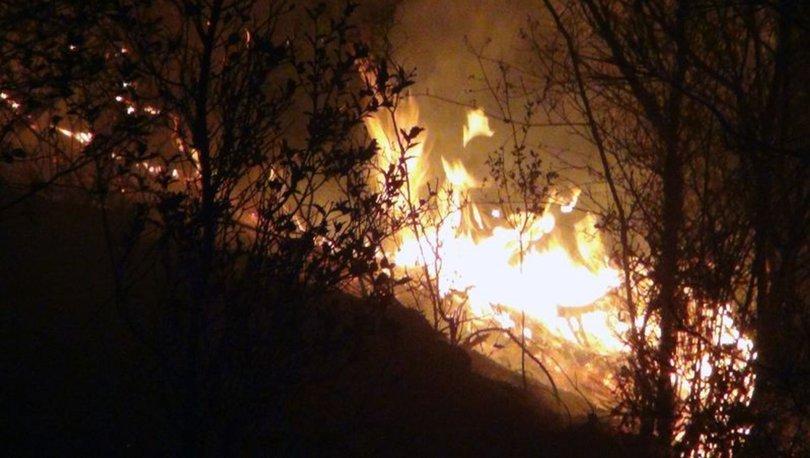FACİA.... Son dakika: Muğla'da art arda orman yangını!