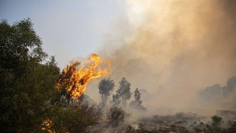 SON DAKİKA: Güney Afrika'da yangın nedeniyle Cape Town Üniversitesi'nden 4 bin öğrenci tahliye edildi