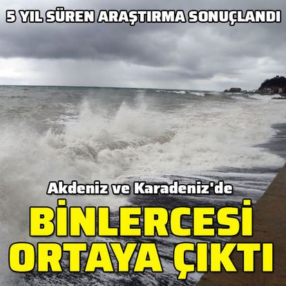 Akdeniz ve Karadeniz'de binlercesi ortaya çıktı