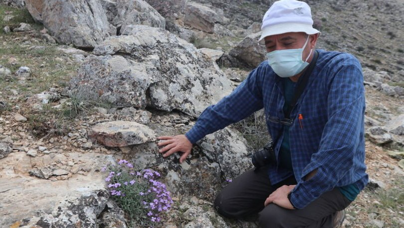 Karamanlı doğasever, bahçesinde yetiştirdiği endemik bitkileri dağlara ekiyor