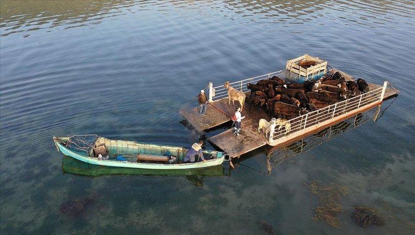 Mada Adası'ndaki Yörükler yaylaya kayıklarla çıkıyor
