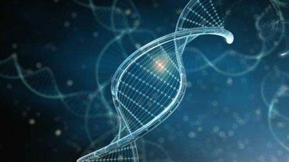 Cinayet geni nedir?