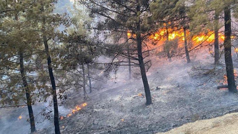 Son dakika: Muğla'da korkutan orman yangını! - Haberler