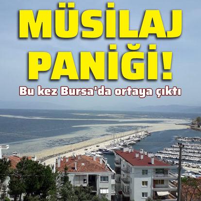 Marmara'yı 'müsilaj' kapladı!
