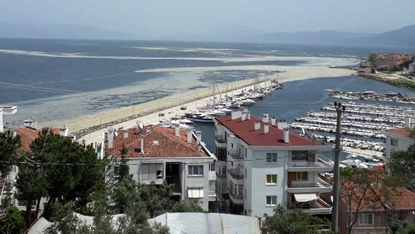 Son Dakika: Marmara'da 'müsilaj' paniği! Böyle görüntülendi... - Haberler