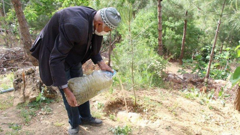 SON DAKİKA: Çöplüğü ormana çevirdi! 11 yılda 10 bin ağaç dikti - Haberler