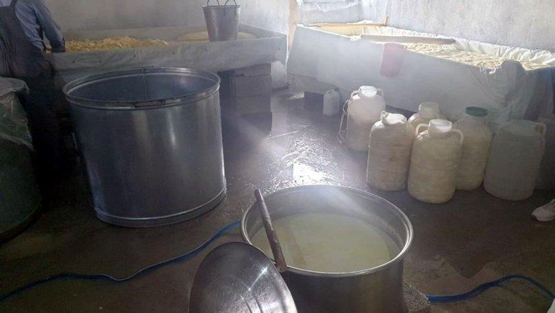 Muş'ta sağlıksız peynir üreten 2 ruhsatsız iş yeri mühürlendi