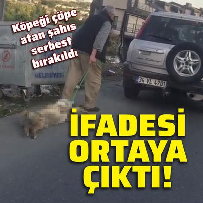 Köpeği çöpe atan şahıs serbest bırakıldı