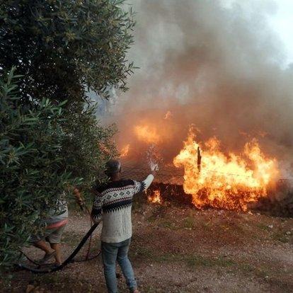 Muğla'da korkunç yangın! Buzdolabının motoru patladı