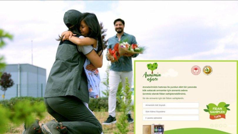 Annemin Ağacı OGM başvuru yap! Annemin Ağacı kampanyası ücretli mi? OGM annemin ağacı kampanya linki