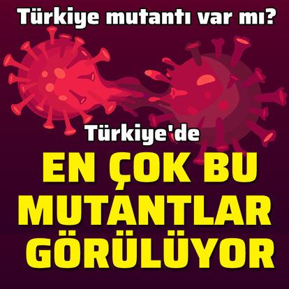 Türkiye'de en çok bu mutantlar görülüyor!