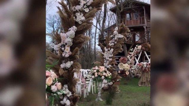 PES DEDİRTTİ! Son dakika: Subasar ormanında 'düğün' tepkisi! - Haberler