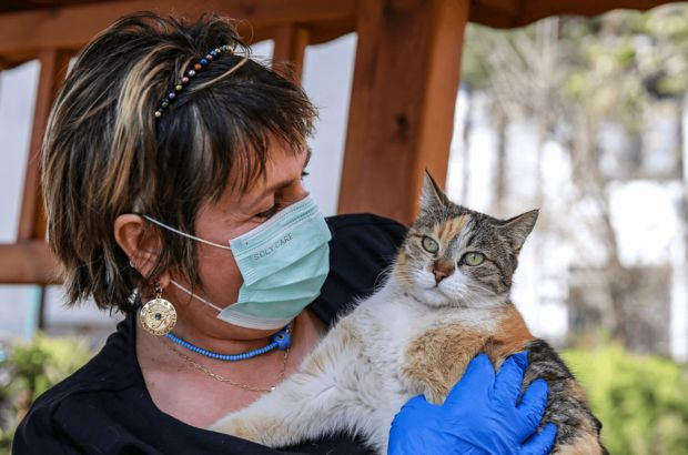 Hayvanlar için geliştirilen Covid-19 aşısı piyasaya sürüldü