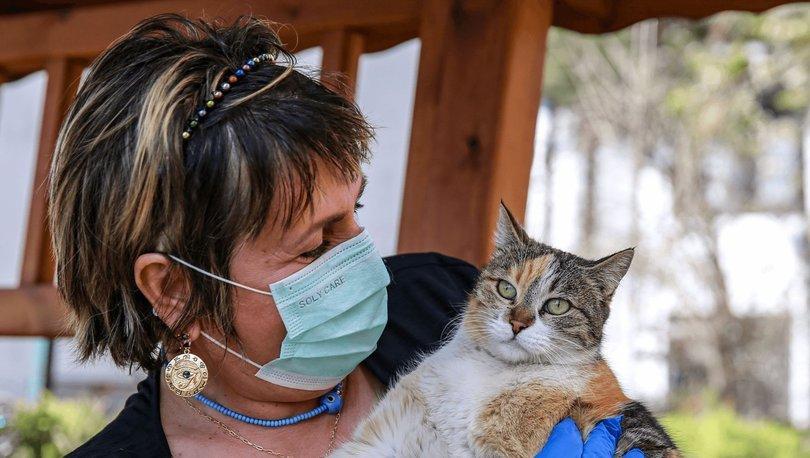 Rusya'nın Carnivac-Kov adlı hayvanlar için geliştirdiği Covid-19 aşısını piyasaya sürdü