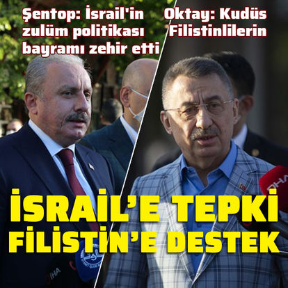 Şentop ve Oktay'dan Filistin mesajı