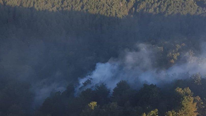 Son dakika: Balıkesir'de ormanlık alanda yangın! - Haberler