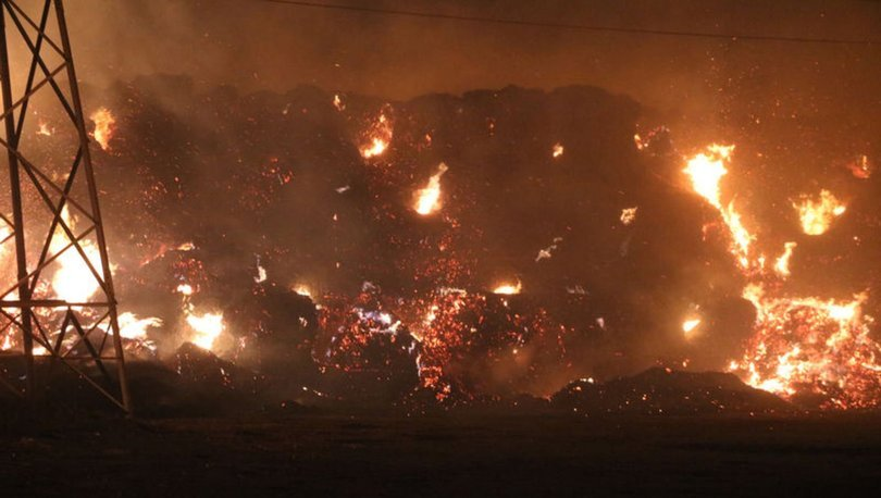 Afyonkarahisar'da biyokütle enerji santralinde yangın çıktı