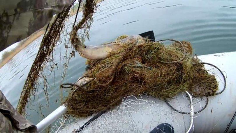 Hayalet ağ... SON DAKİKA: Balık katliamını, balıkçılar ortaya çıkardı