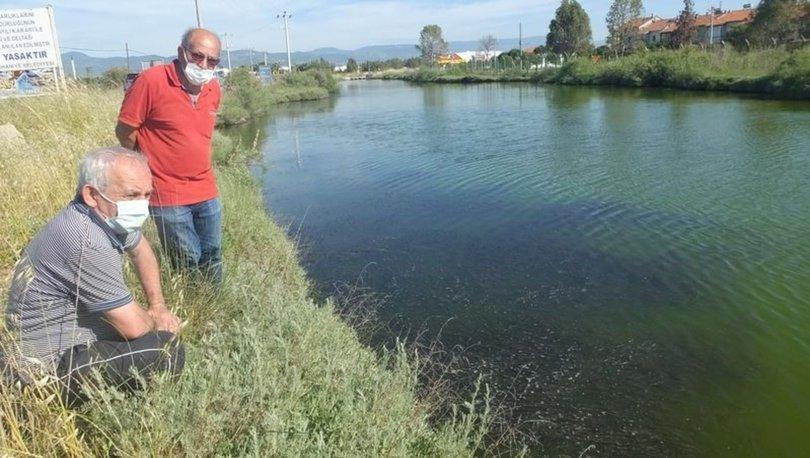 SON DAKİKA: Doğal sit alanında koku kâbusu! - Haberler