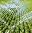 Türkiye Elektrik Dağıtım AŞ (TEDAŞ), 23 bin 310 tarımsal sulama abonesine ait 576 bin liralık ana borcun yapılandırıldığını duyurdu
